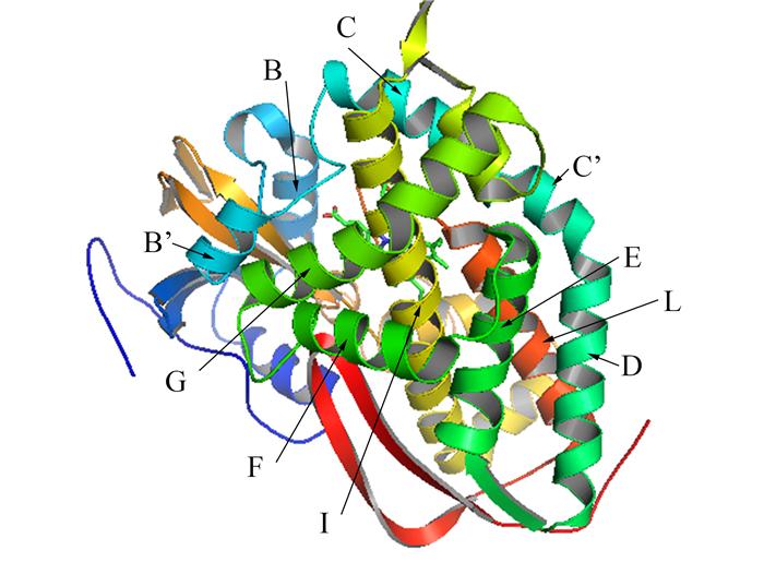 细胞色素P450酶与微生物药物创制